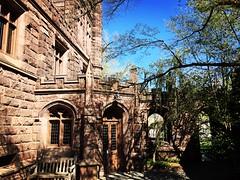 Princeton University (Denis Gobo) Tags: princeton princetonuniversity newjersey