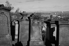 I can see paradise... (John fae Fife) Tags: fujifilmx xe2 scotland footballstadium necropolis glasgownecropolis parkhead cemetery glasgow
