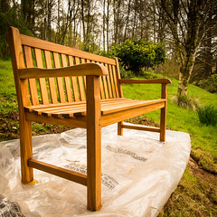 freshly delivered, freshly oiled (grahamrobb888) Tags: nikon nikond800 sigma20mmf18 sigma birnamwood birnam tighnabeithe forest scotland perthshire spring gardenseat wood