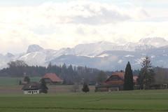 Stockhorn ( BE - 2`190m - Höchster Gipfel der Stockhornkette - Erschlossen mit L.uftseilbahn - Berg montagne montagna mountain ) in den Berner Voralpen - Alpen im Berner Oberland im Kanton Bern der Schweiz (chrchr_75) Tags: albumzzz201703märz märz 2017 hurni christoph chrchr chrchr75 chrigu chriguhurni albumstockhorn stockhorn berg mountain montagne alpen alps voralpen kantonbern schweiz suisse switzerland svizzera suissa