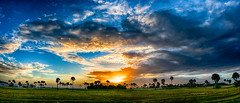 Sunday Sunrise (DonMiller_ToGo) Tags: panoramic hdr panorama 5xp sunrise sharkys hdrphotography florida airport outdoors goldenhour sky hdrpanoramic d810 panoimages2 clouds
