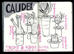 2017.03.26-02 (タケウマ) Tags: スケッチ スケッチブック studiotakeuma イラスト sketch sketchbook illustration illustrator doodle plants