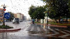 Al Ain street after the rain (Irina.yaNeya) Tags: alain uae emirates rain raindrops drops street city road trees weather car window eau lluvia gotas calle ciudad carretera árboles tiempo ventana coche العين الامارات مطر قطرات شارع مدينة أشجار طريق سيارة طقس نافذة альайн оаэ эмираты дождь деревья дорога капли улица погода окно город машина people