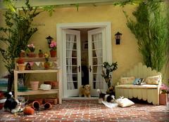 More garden Pergola (TutuBella) Tags: pergola garden goodmorning patio flowers paperflowers pottingbench puppies dog doghouse 112scale handmade