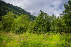 2016.06.12. Bad Gastein (Péter Cseke) Tags: badgastein salzburg austria at
