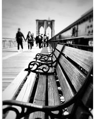Brooklyn Bridge (@ Karin) Tags: monochrome blackwhite blackandwhite bw bridge bench newyork brooklynbridge dof depthoffield usa streetphotograpy streets streetshot