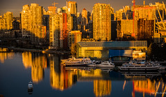 2017 - Vancouver - False Creek East Sunrise (Ted's photos - Returns Mid May) Tags: 2017 bc bcplace cropped falsecreeksunrise nikon nikond750 nikonfx tedmcgrath tedsphotos vancouver vancouverbc vancouvercity vignetting reflection waterreflection sunrise eastfalsecreek falsecreekeast boats shadows constructioncranes crane seawall boat moored cans2s canada
