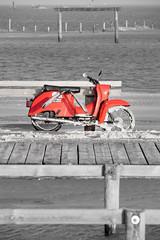 1170827-St.-Peter Ording-.jpg (Mille.12) Tags: wind beach blackandwhite northsee strand wasser tiere stadt ording 2016 sylvester nordsee stpeterording