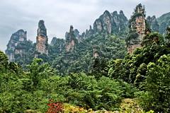張家界 (686阿鴻) Tags: 山峰 天空 風景 植物 叢林 溪谷