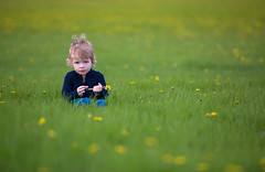 Spring (and a bad hair day) (Philocycler) Tags: grass spring dandelion flowers boquet boy eyes chicagolakefront canon canon5dmarkiii chicagoist