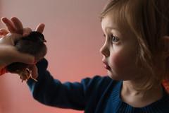 97  365 (trois petits oiseaux) Tags: farm childhood easter chick kids