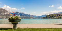 Flowerpot with a view (gregory.sevin) Tags: flowers flowerpot lake landscape annecy france