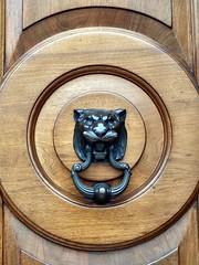Lion Knocker (the justified sinner) Tags: justifiedsinner lion door knocker metal wood panasonic minolta rokkorx 45 2 md gx7 london chelsea kensington