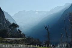 #nature #naturephotography #landscape #landscapephotography #mountains #travel #travelphotography #snow #trees #village #roadtrip #sky #morning #fog #sunlight #immaturephotographyllp #shutterstock #alamyinstagram #eyeemphoto #dslrofficial #yourshot_india (Immature Photography LLP) Tags: morning sunlight roadtrip nature sikkim lachung travel instagramapp square squareformat iphoneography clarendon