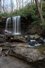 A Spring fall (Lisa Meadville) Tags: waterfall colefunfalls laurelhighlands forebesstateforest flowing stream forest spring water misty serene rocks rhododendron silky