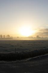 Early bird (Martijn A) Tags: sunrise zonsopgang dawn dageraad sun zon light licht winter nature natuur morning ochtend early vroeg cold koud canon 550d dslr eos ef35mmf2isusm wwwgevoeligeplatennl