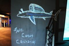 Codex Urbanus (Street_art77) Tags: expo expostion codex urbanus streetart street streetartparis paris aquarium de