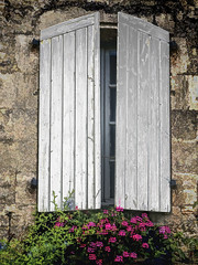 (Artypixall) Tags: flowers france window facade shutters aquitaine blaye