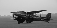 De Havilland Dragon Rapide In The Morning Mist (saxman1597) Tags: blackandwhite monochrome plane airplane 1930s aircraft flight aeroplane airshow duxford airliner morningmist dehavilland imperialwarmuseum classicairliner dehavillanddragonrapide classictransport nikond5000 nikon18300vr duxfordairshowautumn