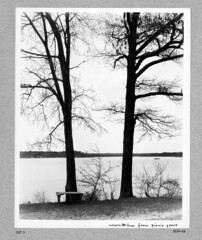 photo album 09264-01-ph015 (Olmsted Archives, Frederick Law Olmsted NHS, NPS) Tags: parks parvin