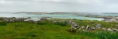 Atlantic coast #1 (frederic.conte) Tags: ocean ireland panorama green beach stone wall landscape coast sand pierre sable vert cte atlantic connemara paysage mur plage irlande atlantique