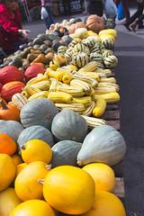 1/365 (hello libergirl) Tags: autumn farmersmarket squash greenmarket unionsquare