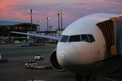 ANA B772 (772A0986) (Passenger32A) Tags: travel sunset japan plane tokyo ana flying airport asia aircraft flight terminal narita allnipponairways b777200