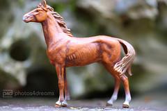 vintage toy horse (photos4dreams) Tags: horses horse brown toy photo photos plastic braun pferde pferd spielzeug stallion fuchs plastik hengst trakener photos4dreams photos4dreamz p4d