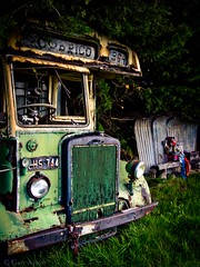 "the school bus • <a style=""font-size:0.8em;"" href=""http://www.flickr.com/photos/44919156@N00/15193791517/"" target=""_blank"">View on Flickr</a>"