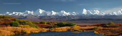 .. (Ed Boudreau) Tags: alaska landscape tundra denalinationalpark kettlepond autmncolores denaliautumn