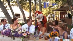 LSU Mascot (videoimpressions) Tags: wedding fun groom bride mascot lsu