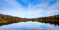Autumn panorama (tods_photo) Tags: autumn sky reflection green topf25 water yellow forest high colorful ngc colourful 2014 welltaken storlondammen