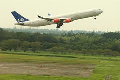 IMG_0793 OY-KBI (biggles7474) Tags: tokyo international airbus sas airlines narita phew scandinavian a340 nrt rjaa oykbi