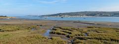 15319712521 f51b6c645f m The Teifi Estuary Cardigan