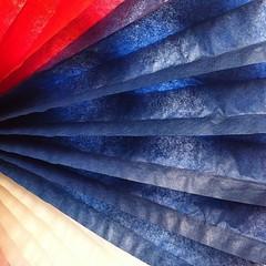 Autor: Mauricio Rojas (Más de 77 años difundiendo el arte fotográfico) Tags: chile blanco azul rojo estrella chilena fiestaspatrias fotocineclub