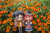 Happy Autumn! (nyssalily95) Tags: doll blythe custom zaloa vainilladolly