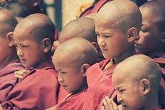 Young Monks (Marble Blue) Tags: trip travel light vacation portrait india color canon vintage children shot naturallight monks startup ladakh travelguide marbleblue felixkasiske