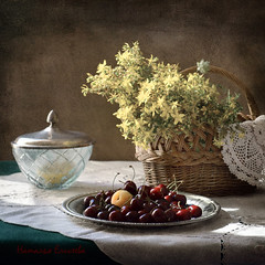 Summer is gone (elisevna) Tags: flowers summer stilllife plants texture cherries basket plate stilleben wildflowers naturemorte glassware трава корзина натюрморт ваза черешня зверобой