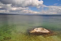 Fishing Cone (izu_ga) Tags: yellowstone geyser hotspring yellowstonelake fishingcone westthumbgeyserbasin