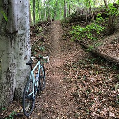 Dirty Jersey CX adventures #weavercycleworks #custombicycles #rideinthewoods #trailwizard #haveyouseenhim