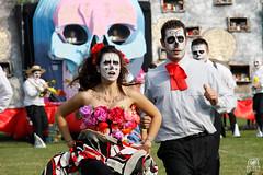 Contrada Mulino - El Dia de Los Muertos (andrea.prave) Tags: milano 28 festa settembre lombardia palio mulino brera santambrogio contrade popolare 2014 certosa baia paese contrada tradizioni comune eldiadelosmuertos arluno festapaesana rogorotto beacqua