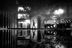superficial. (jonathancastellino) Tags: leica light abstract tree water pool modern night walking upsidedown walk modernism m summicron figure osgoodehall toront