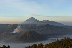 Mount Bromo (tommyajohansson) Tags: morning vacation mist holiday indonesia geotagged volcano vacances java nationalpark asia southeastasia tour urlaub earlymorning jawa ferie semester indonesien morningmist vulkan faved mountbromo indonsie eastjava rundtur tommyajohansson mountbromonationalpark volcanicjava