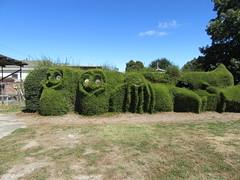 Railton Tasmania topiary (Joybelle007) Tags: topiary tasmania clever
