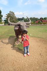 IMG_0200 (syafiqqzz) Tags: bukittinggi bukit tinggi padang west sumatra sumatera barat marapi singalang