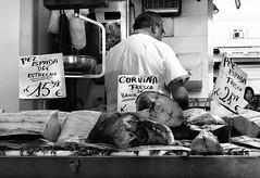 Poissonier-Andalousie-2015.jpg (avenelchristophe) Tags: streetphoto portrait market espagne street fish city outdoor nb marché cadix commerce urban voyage vendeur andalousie people poisson blackwhite