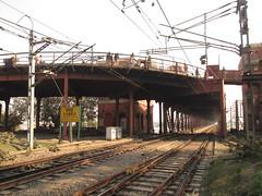 (Railroad Rat) Tags: varanasi banaras kashi shiva city india uttar pradesh ganga river plain mother mata hindu hindi ganesh parvati rudraksh medicine om namah shivaya jai bum bolenath