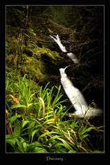 discovery (tiggerpics2010) Tags: scotland nature westhighlands woodland moss mossy trees growth life green river