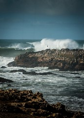 Big Waves Pescadero State Beach (CDay DaytimeStudios w/1,000,000 views) Tags: beach birds ca california californiasateparks cloud clouds cloudy cloudyday coastline ocean pacificcoast pacificcoasthighway pescaderoca road rocks rockybeach sanmateocoast surf waves