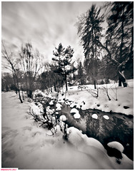 The trail to the left (DelioTO) Tags: 4x5 adoxchs100 blackwhite d23 desaturated february landscape natparks ontario pinhole rural trails winter woods